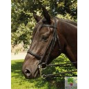 English leather double bridle