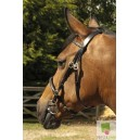 English leather in-hand bridle