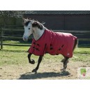 Rhinegold Breathable Konig Outdoor Rug- NOW IN BLACK OR RED!